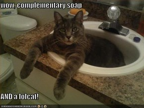 wow, complementary soap  AND a lolcat!