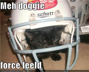 Meh doggie  force feeld