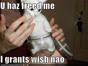 U haz freed me  I grants wish nao