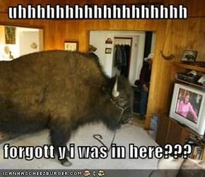 uhhhhhhhhhhhhhhhhhh  forgott y i was in here???