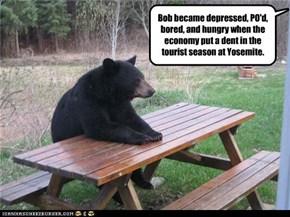 the economy sucks!