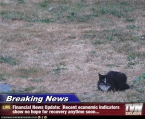 Breaking News - Financial News Update:  Recent economic indicators show no hope for recovery anytime soon...