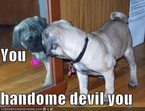 You  handome devil you