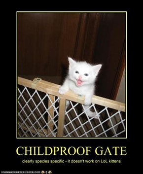 CHILDPROOF GATE