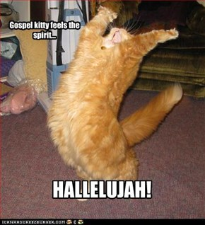 Gospel kitty feels the spirit...
