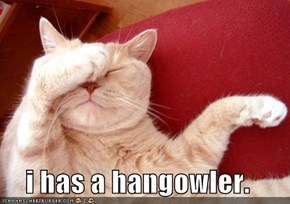 i has a hangowler.