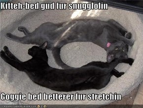 Kitteh-bed gud fur snugglolin  Goggie bed betterer fur stretchin