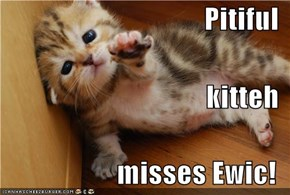 Pitiful  kitteh  misses Ewic!