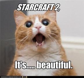 STARCRAFT 2,