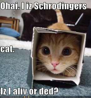 Ohai. I iz Schrodingers  cat. Iz I aliv or ded?