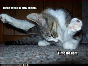 I been petted by dirty human...