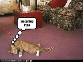 im calling PETA