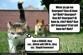 Geh a GOGGIE, they sez....Kitteh will LUV ih...they sez.  Stupid hoomanz!