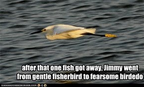 after that one fish got away, Jimmy went from gentle fisherbird to fearsome birdedo