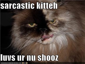sarcastic kitteh  luvs ur nu shooz