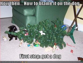 Now then... How to blame it on the dog  First step: get a dog