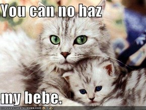 You can no haz  my bebe.