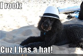 I roolz  Cuz I has a hat!
