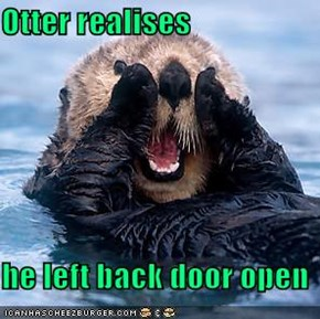 Otter realises  he left back door open