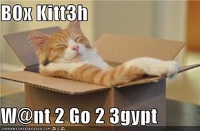 B0x Kitt3h  W@nt 2 Go 2 3gypt