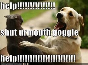 help!!!!!!!!!!!!!!! shut urmouth goggie help!!!!!!!!!!!!!!!!!!!!!!!