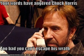 Your words have angered Chuck Norris  Too bad you can't escape his wrath