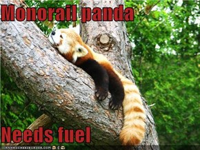 Monorail panda  Needs fuel
