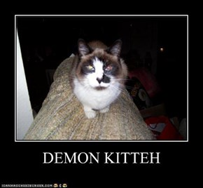 DEMON KITTEH