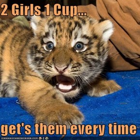 2 Girls 1 Cup...  get's them every time