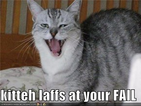 kitteh laffs at your FAIL