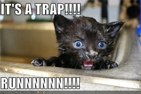 IT'S A TRAP!!!!  RUNNNNNN!!!!