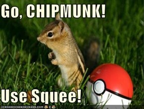 Go, CHIPMUNK!  Use Squee!