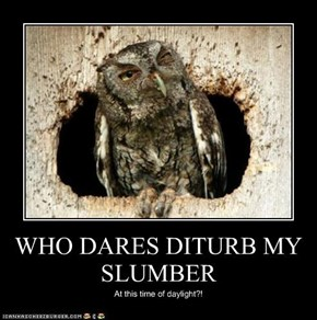 WHO DARES DITURB MY SLUMBER