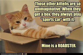 "Those other kittehs are so unimaginative. When they get a box, they always play ""sports car"" with it."
