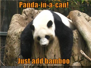Panda-in-a-can!  Just add bamboo