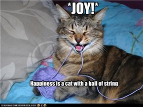 Happiness is a cat with a ball of string