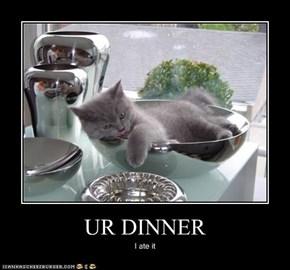 UR DINNER