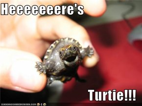 Heeeeeeere's  Turtie!!!