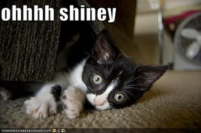 ohhhh shiney