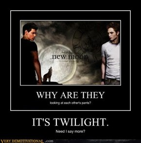 IT'S TWILIGHT.