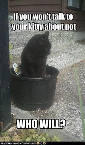 Kitty Pot