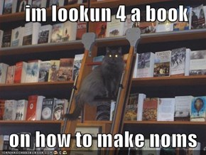 im lookun 4 a book    on how to make noms