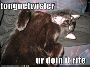 tonguetwister  ur doin it rite