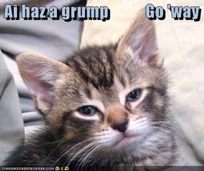 Ai haz a grump           Go 'way
