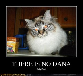 THERE IS NO DANA