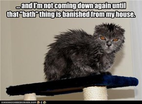 "... and I'm not coming down again until  that ""bath"" thing is banished from my house."