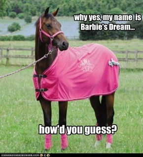 why yes, my name  is Barbie's Dream...