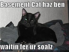 Basement Cat haz ben   waitin fer ur soalz