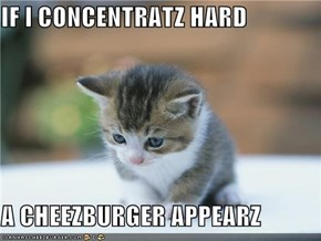 IF I CONCENTRATZ HARD  A CHEEZBURGER APPEARZ