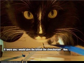 If I were you, i would give the kittteh the cheezburger.    Nao.